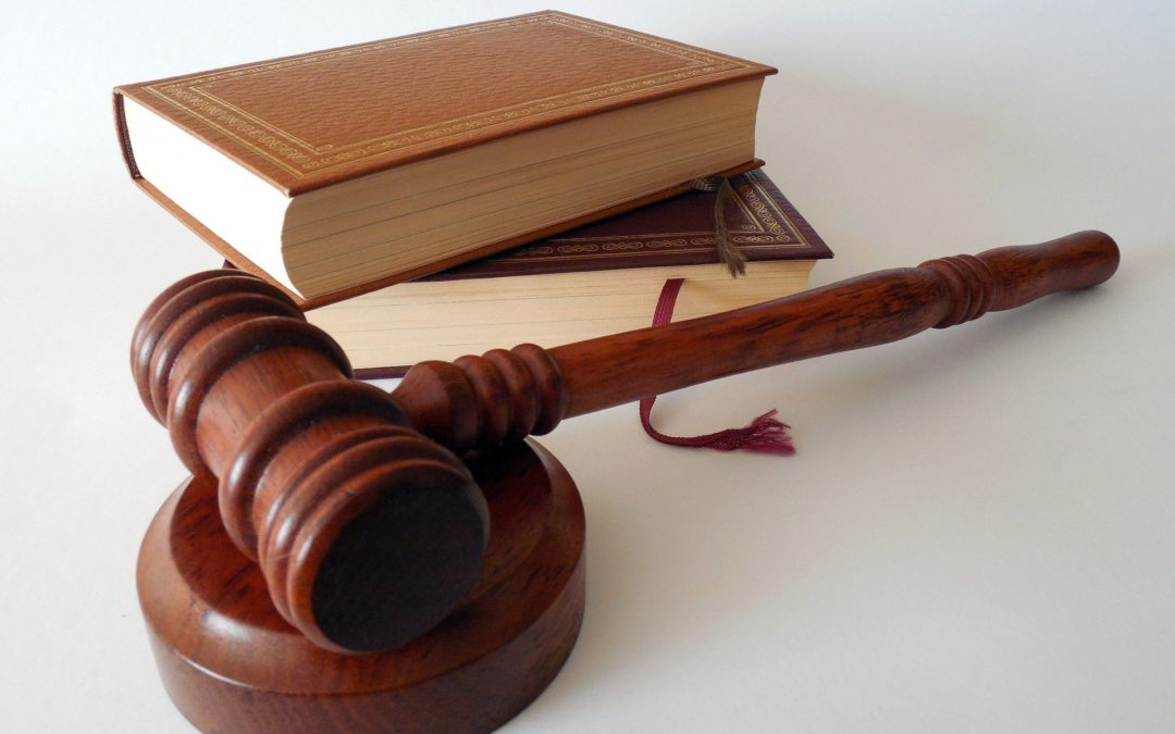 Information and Impact on the Result of Judicial Processes